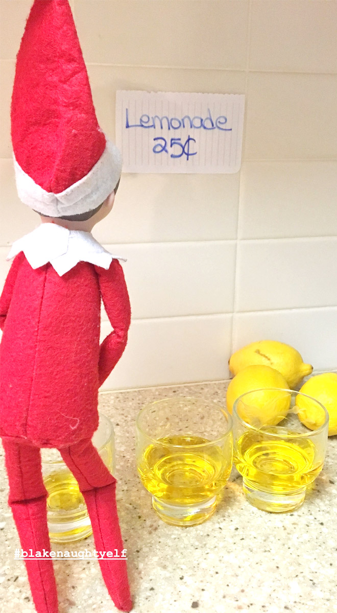 The Inappropriate Elf on the Shelf Photo Contest